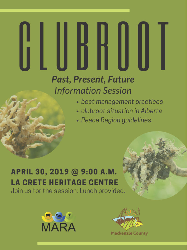 Clubroot information session